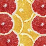 Materiel-foto-frukt-exotisk-bakgrund-apelsin-och-grapefrukt-överkant-sikt royaltyfria bilder