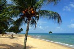 Materielbild av den Tioman ön, Malaysia Arkivbild