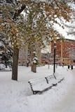 Materielbild av en snöa vinter på Boston, Massachusetts, USA Fotografering för Bildbyråer