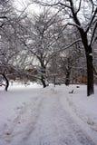 Materielbild av en snöa vinter på Boston, Massachusetts, USA Arkivbilder