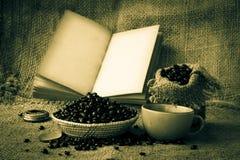 Materielfoto: öppna tomma sidor för gammal bok, tomt gulingpapper på da Arkivbild