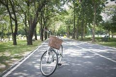 Materielfoto - den gamla cykeln i ny sommar parkerar Royaltyfria Foton
