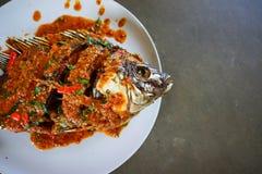 """Materielfoto - djup †""""stekte fisken och chilisås Royaltyfri Foto"""
