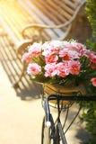Materielfoto - tappningcykel med korgen med blommor i så Fotografering för Bildbyråer