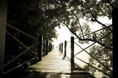 Materielfoto: Träbro i det sh mörkret för skogtappningfilter royaltyfria bilder