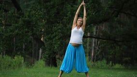 Maternidad prenatal de la yoga embarazada que hace diversos ejercicios en el parque en la hierba, respiración, estirando, estátic metrajes