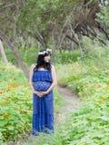 maternidade Imagens de Stock