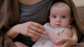 Maternidade loving da proposta da família do toque macio da mãe foto de stock royalty free