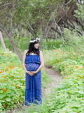 maternity Arkivbilder
