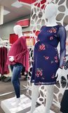 Maternity Clothes In A Department Store. A display of maternity clothes on mannequins Royalty Free Stock Photo