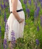 maternity Gravid kvinna som poserar i ängfältet bukta svart färg hands henne bild den gravida tryckande på vita kvinnan Arkivfoto