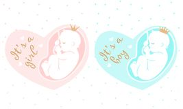 Maternity  illustration. It is a girl. It is a boy. Fetus inside mom`s belly. Pregnancy icon. Prince and princess Stock Photos