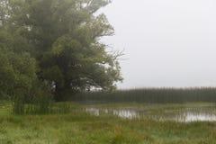 Matese jezioro Zdjęcia Royalty Free