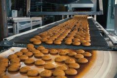 Matfabrik, produktionslinje eller transportband med nya bakade kakor Modernt automatiserat konfekt och bageri royaltyfri fotografi