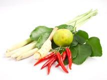 matgruppingredienser som kryddar thai tomyum Arkivbilder