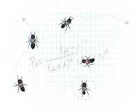 Mathematical Ants Royalty Free Stock Photos