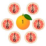 Mathematical games for children. Study the fractions numbers, example with of a grapefruit. Mathematical games for children. Study the fractions numbers stock illustration