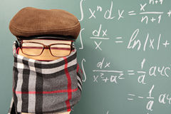 Mathematician Royalty Free Stock Photo