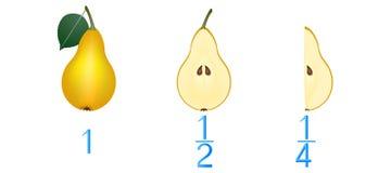 Mathematische Spiele für Kinder Studieren Sie die Bruchzahlen, Beispiel mit Birnen stock abbildung