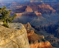 Mather Point, Grand Canyon Stock Photos