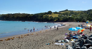 Matheson Bay New Zealand Fotografia Stock Libera da Diritti
