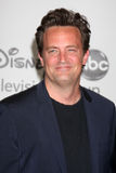 Mathew Perry Royalty Free Stock Photo