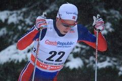 Mathias Rundgreen - Cross Country Lizenzfreies Stockbild