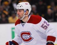 Mathieu Darche, Kanadier aus Montreal Stockbild