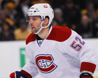 Mathieu Darche, Montreal Canadiens Stock Image