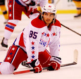 Mathieu Perreault Washington Capitals Royalty Free Stock Photo