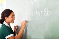 Maths d'écriture d'étudiant Images stock