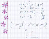 Maths and flowers Royalty Free Stock Photo