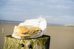 Matie filet fish sandwich on the North Sea stock photo