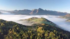 Matin aérien au-dessus de paysage brumeux en automne avec de belles couleurs d'or Vol de mouvement lent clips vidéos