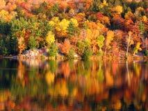 Matin au lac Photographie stock libre de droits