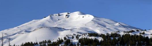 Matin au Mt Célibataire, Orégon Photographie stock libre de droits