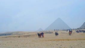 Matin brumeux à Gizeh, l'Egypte banque de vidéos