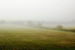 matin brumeux image stock