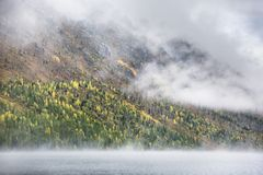 Matin brumeux Abaissez le lac Multinskoe Terre d'automne d'Altai de montagne Photo libre de droits