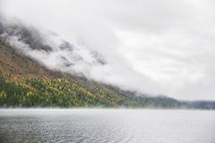 Matin brumeux Abaissez le lac Multinskoe Terre d'automne d'Altai de montagne Photographie stock libre de droits