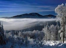 Matin brumeux aux montagnes Photographie stock