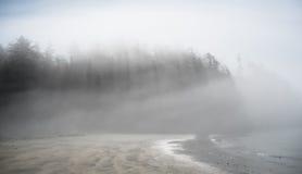 Matin brumeux brumeux Photos libres de droits
