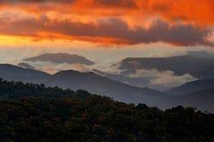 Matin brumeux brumeux froid avec le lever de soleil crépusculaire dans une vallée dans la Co photographie stock libre de droits