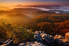 Matin brumeux brumeux froid avec le lever de soleil dans une vallée de chute de parc de Bohème de la Suisse Collines avec le brou Photos stock