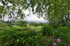 Matin brumeux d'été au-dessus du village photographie stock libre de droits