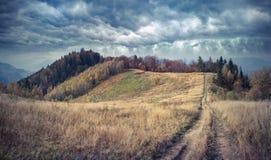 Matin brumeux d'automne dans les montagnes carpathiennes photographie stock