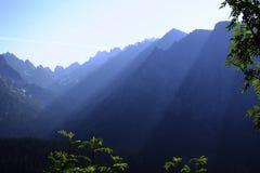 Matin brumeux dans de hauts tatras Photographie stock libre de droits