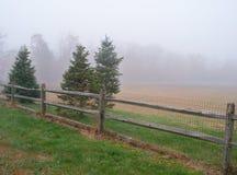 Matin brumeux dans la chute Photo stock