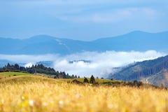 Matin brumeux dans les montagnes Photo libre de droits