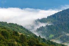 Matin brumeux dans les montagnes Photos libres de droits